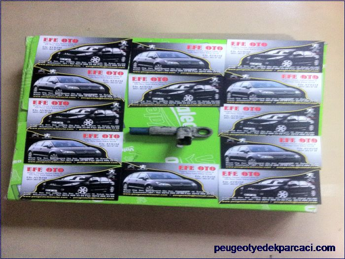 Peugeot 206 eksantrik sensörü