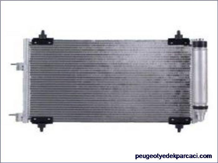 Peugeot 307 Klima Radyatörü