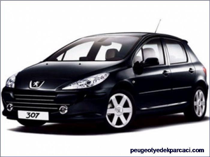 Peugeot 307 Sol Arka Kapý